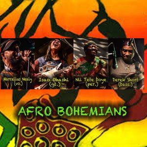 Afro Bohemians